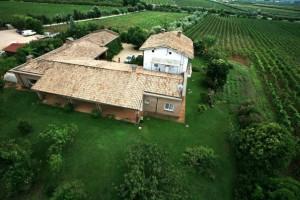 In provincia di Latina  la strada dei vini più lunga d'Italia