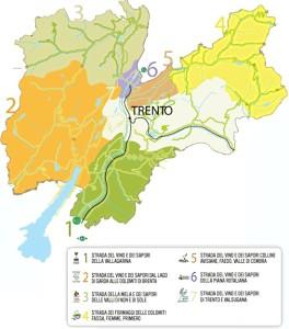 Numerose le varietà di uve della regione  e così il Trentino è indiscusso regno del vino