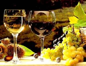 Il giusto uso dell'alcol  per non danneggiare l' organismo.