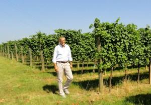L' azienda vinicola di Lenardo Vineyards:  l'eccellenza friulana che viaggia nel mondo