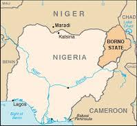 Estremisti islamici avrebbero sgozzato 44 abitanti del villaggio Dumba nello stato di Borno in Nigeria.