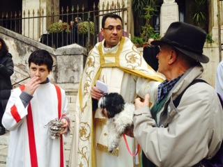 Animali e padroni a Messa nella chiesa di S. Eusebio di Roma. S. Antonio Abate celebrato all'Esquilino.