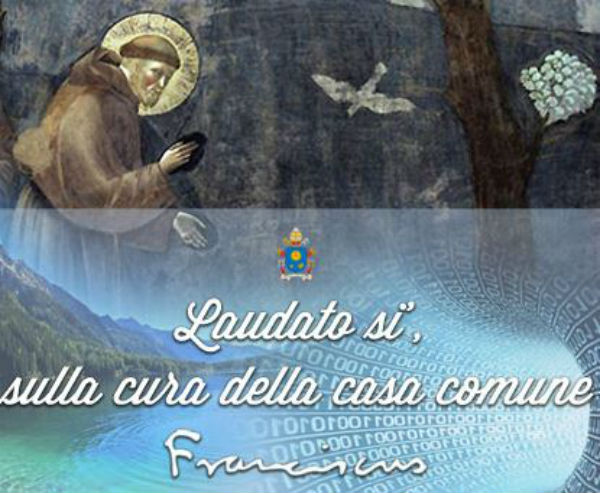 Risultati immagini per Francesco, un papa ecologico?