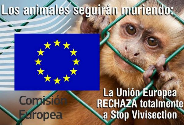 La vivisezione va avanti nella Ue. Non accolta la petizione con firme raccolte in tutta Europa