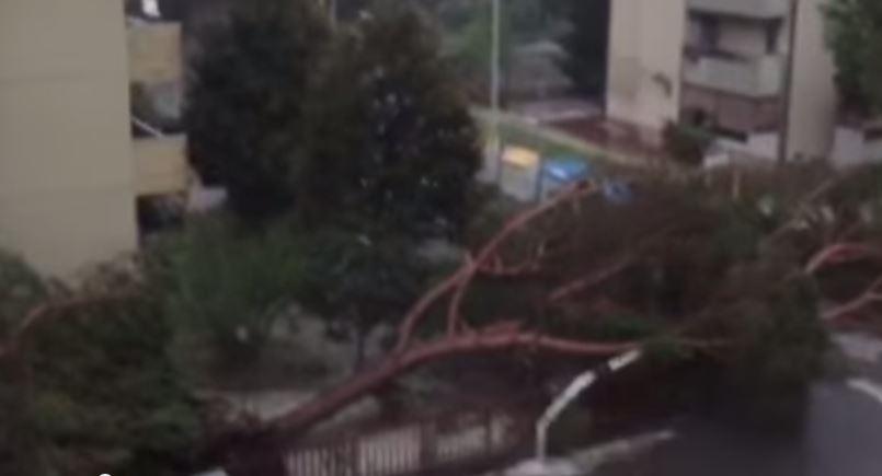 Violento nubifragio mette in ginocchio Firenze e blocca i treni per Roma