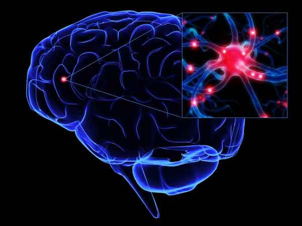"""Parkinson: ricerca canadese scopre lo stress """"ossidativo"""" di alcune cellule che """"bruciano"""" nel cervello"""