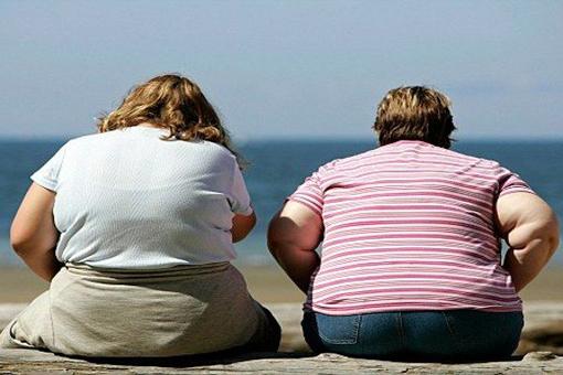 Dieta: fa perdere peso più la riduzione dei grassi che quella dei carboidrati