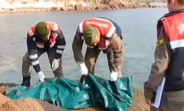 Migranti: muoiono in 5 tra Turchia e Grecia. Anche neonato di tre mesi