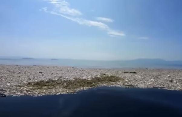 Mediterraneo mare di plastica. In Italia il fenomeno attorno alla foce del Po