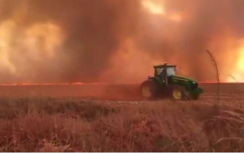 Brasile: pressione internazionale per gli incendi in Amazonia